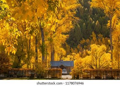 Autumn in Arrowtown