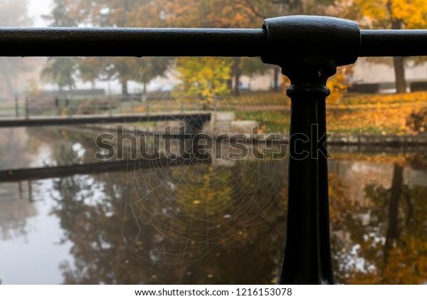 Autumn atmosphere mood