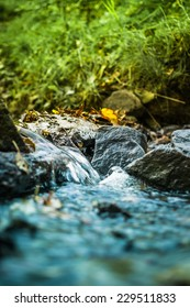 Autumn babbling / Little brook out of the town in the autumn time /
