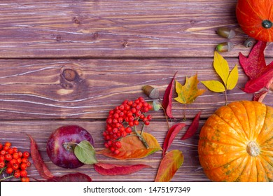Autumn background with colorful ash-tree and maple leaves, acorns, ashberry, apples and pumpkins.  Corner of fall harvest with copy space. Mockup for seasonal offers and holiday post card, top view.