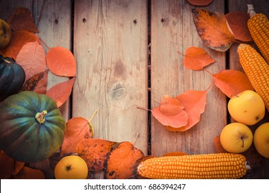 Autumn Background with corn, acorn squash, yellow apples and red leaves, a rustic wooden table, Yelow corn in fall border