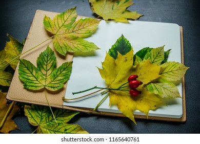 Autumn background: dry autumn leaves and plants, dried flowers and petals with blank sketchbook mock up with yellow paper . Top view. Flat lay.