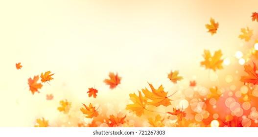 September Background Stock s & Vectors