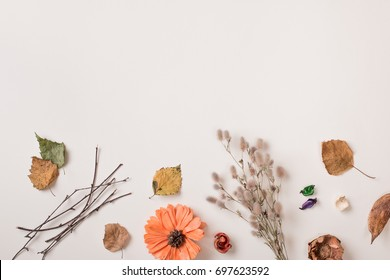 Autumn background: fallen leaves, dry petals, dried flowers and plants, simple rustic branches and orange flower on white with copy space for text from top. Top view. Flat lay.