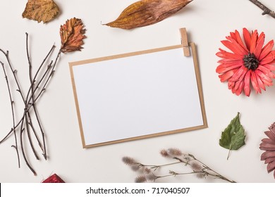 Autumn background: fallen leaves, dry petals, dried flowers and plants, simple rustic branches on white with  blank stationary template / invitation mockup / empty paper card. Top view. Flat lay.