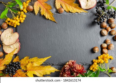 Autumn background flat lay. Fallen leaves with berries and nuts on dark background with chalkboard. Halloween or Thanksgiving day. Top view. Copy Space.