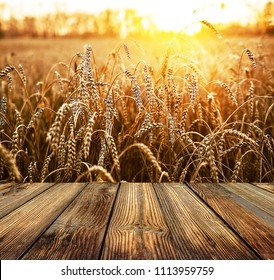 autumn background with free place on wooden table for your decoration. wheat field landscape and wood floor,empty wooden table with wheat field background, landscape and desk of free space