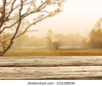 Autumn background of free space for your decoration and wooden table .