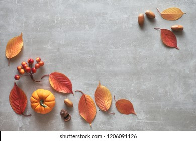 Autumn background in gray and orange: wecorative pumpkin, acorns, berries and red leaves arranged on gray concrete background, copy-space