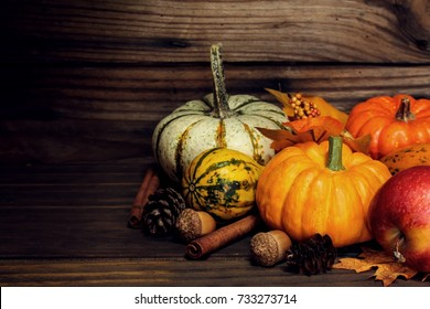 Autumn background with harvest vegetables and fruits on dark rustic wooden frame /Thanksgiving Theme with copy space