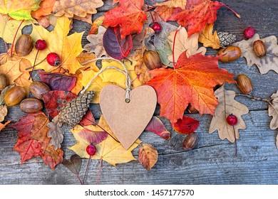Herbsthintergrund mit herzleerer Grußkarte und bunten Blättern auf Holzbrett. Thanksgiving-Holztisch mit hellen Herbstblättern, Akkornen. Herbstsaison Konzept, Herbstkulisse. Kopienraum