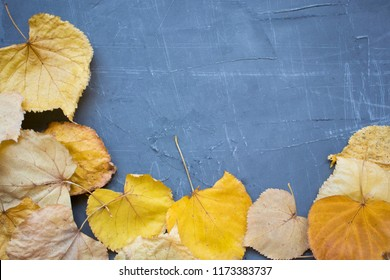 Autumn background with leaf. Yellow leaf on a cement background.
