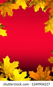 Autumn background. Leaves frame on the red background