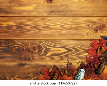 Autumn background. Maple leaves with cones and acorns on the wooden board. Top view