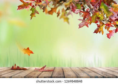 autumn background old board
