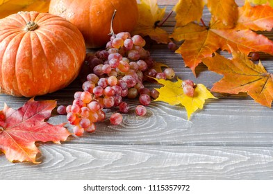 Autumn background on gray boards. Yellow and red leaves, pumpkins, grapes. Selective focus. Place for text.
