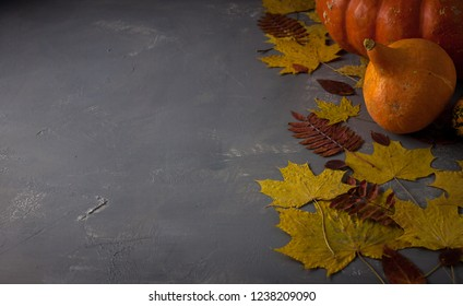 Autumn background with pumpkin and leaves. Autumn mood. Copy empty space