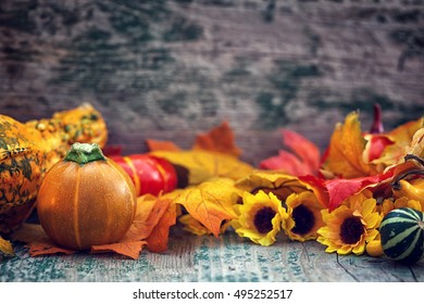 Autumn background with pumpkin and sun flower on wooden table