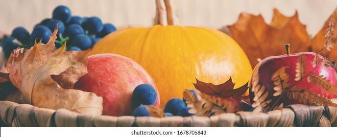 Herbsthintergrund mit Kürbis. Erntedanktag. Selektiver Fokus. Natur.
