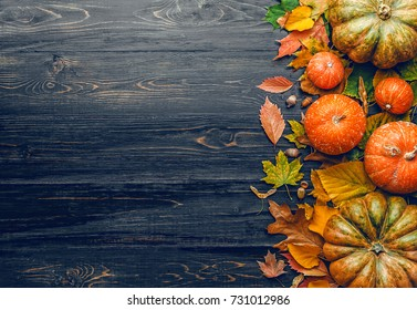 autumn background with pumpkins, autumn leaves, hops and oak acorns lying on a black wooden background