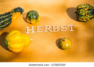 Autumn background, background with pumpkins and text, yellow background with pumpkin