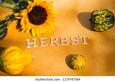 Autumn background, background with pumpkins and text, yellow background with pumpkin, Herbst = Autumn