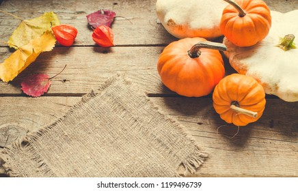 Autumn background with pumpkin/toned photo