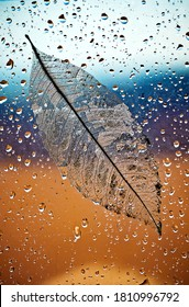 Autumn background. Rain on window with leaf with natural water drops.