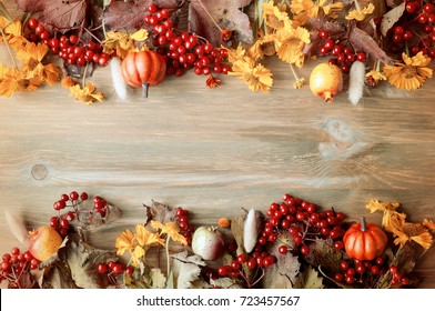 Autumn background. Seasonal autumn nature berries, pumpkins, apples and flowers on the wooden background. Autumn still life with free space
