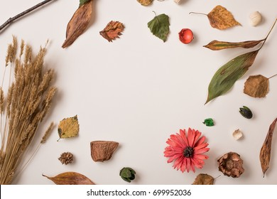 Autumn background: set of dry plants fallen dried leaves, petals, flowers and wheat bunch making space in center. White surface. Top view. Flat lay.