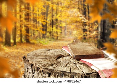 autumn background and space for your decoration
