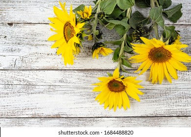 Autumn background with yellow sunflowers on white wooden board with copy space