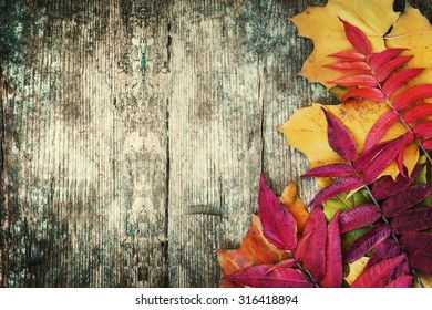 Autumn background/Autumn leaves over wooden background/Thanksgiving day concept