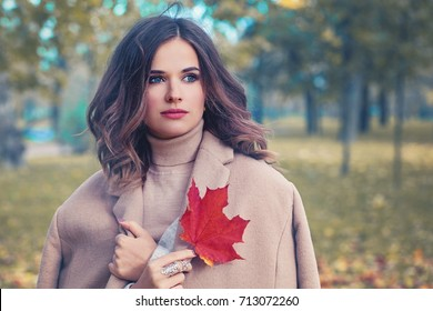 Autumn Beauty. Cute Woman with Fall Leaves in the Autumn Park Outdoors in Sunny Day