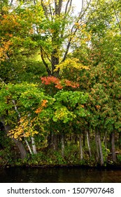 Autumn beauty at the lake