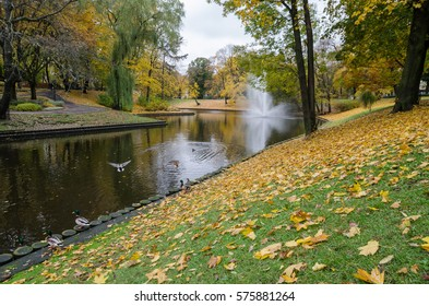 Autumn beauty in park