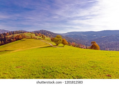 Autumn in the Beskidy mountains, Poland.  Colorful trees aong the winding path with a view to the vast hills of grass and woods.