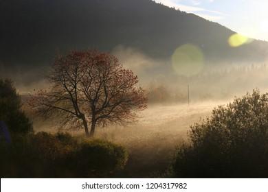 Autumn in Bieszczady Mountains, Poland