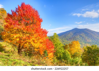 Autumn at Blue Ridge Parkway.