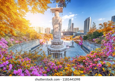 Autumn of Bongeunsa Temple During the Summer in the Gangnam District of Seoul, South Korea.