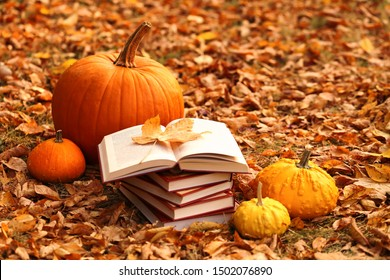 Autumn books. Reading books about autumn.Halloween books. Stack of books and orange pumpkins set on autumn foliage on nature background