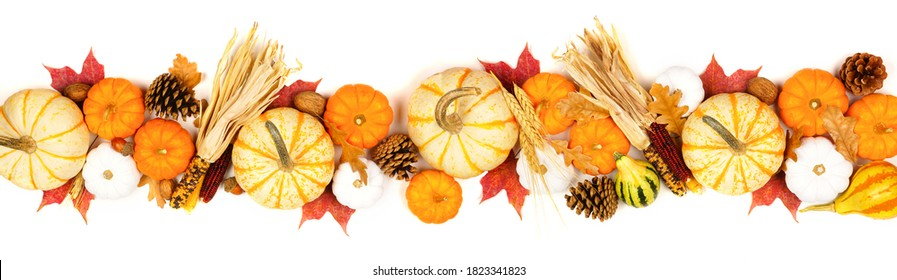 Autumn border of assorted pumpkins, gourds, leaves and corn. Top view isolated on a white background.