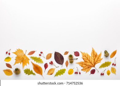Autumn border made of leaves and acorns on white background, copy space. Flat lay, top view.