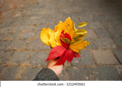 Yellow leaves images stock photos vectors shutterstock autumn bouquet of red yellow and green leaves in a young ladys hands mightylinksfo