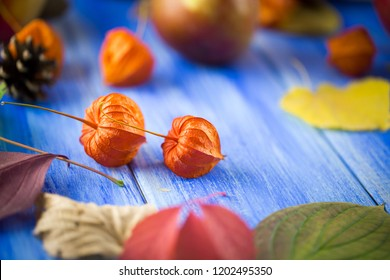Autumn bright background. Flowers, leaves and fruits on a blue wooden background. Background for the autumn holidays and thanksgiving day.