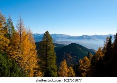 Autumn in the Bucegi mountains, Romania