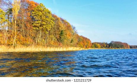 Autumn by Stines Minde