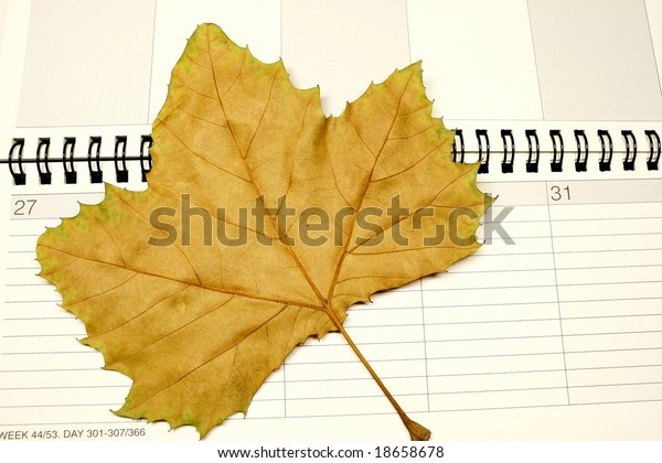 Autumn Calendar with fall leaf concept for time and schedule