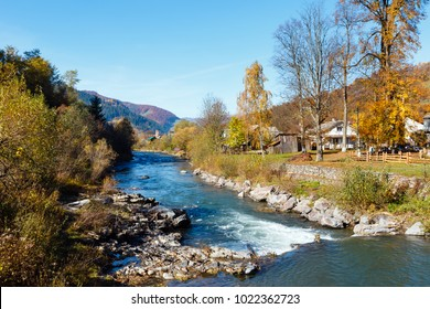 Autumn Carpathian mountain White Tysa river landscape with multicolored yellow-orange-red-brown trees on slope and river in mountain gorge (Transcarpathia, Ukraine).