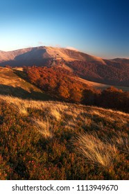 Autumn in Carpathians, Ukraine. Polonyna Krasna mountain range